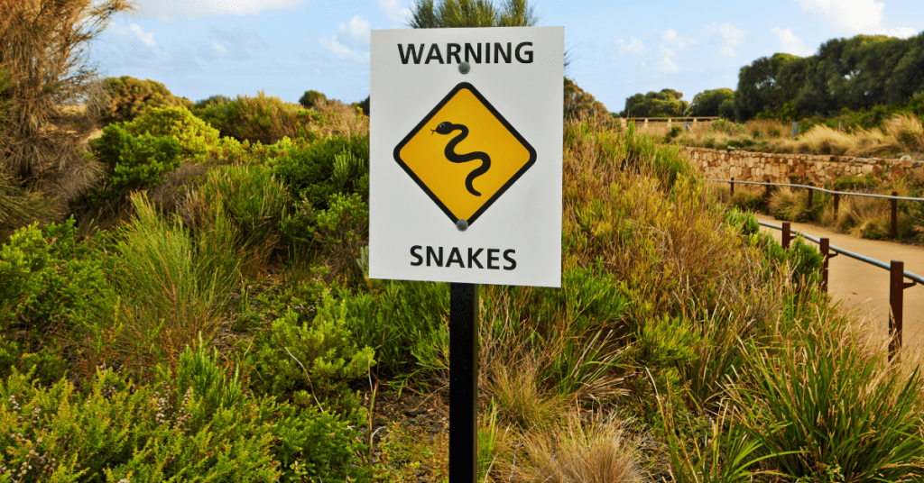 Warning sign snakes, greenery in background.