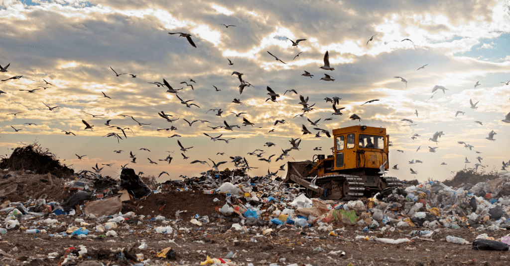 Why Single Use is A Problem Landfill With Plastic Bags