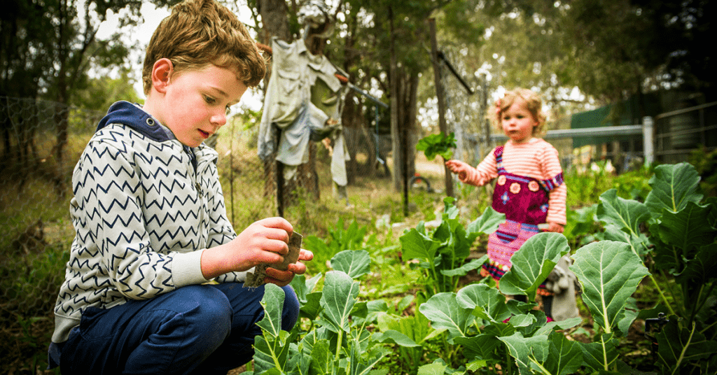 A young boy and a young girl walking through a vegetable garden and picking produce
